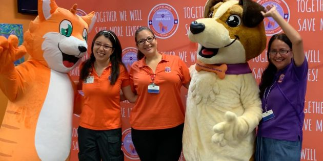 Animal Services Mascot Unveiling